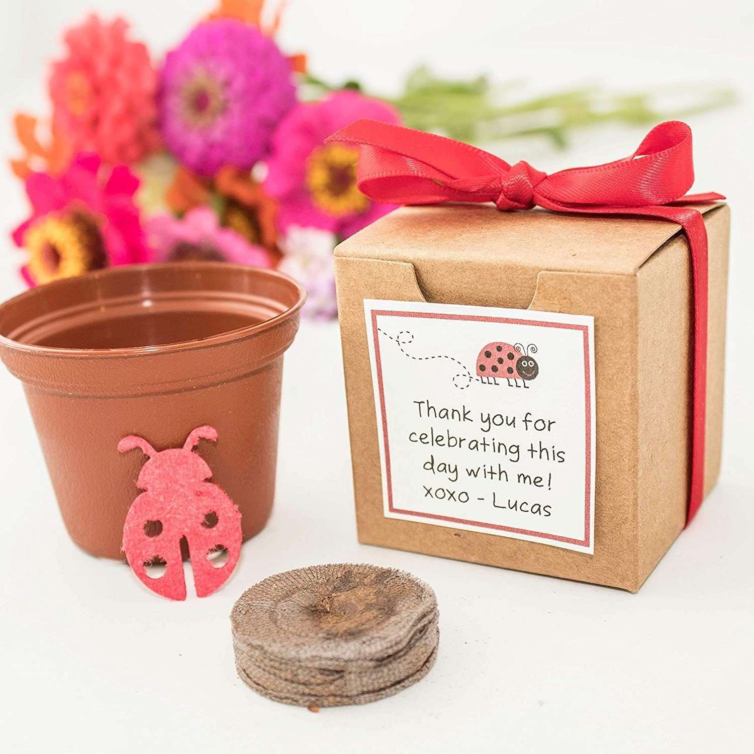 Plantable Lady Bug Garden Kit Personalized Birthday Party Favors Set Of 12