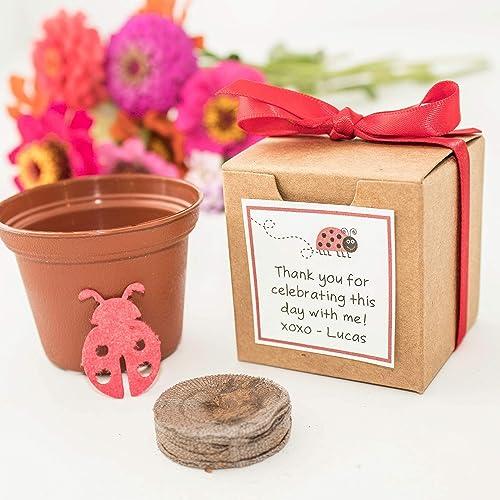 Amazon Plantable Lady Bug Garden Kit Personalized Birthday