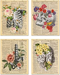Flower Anatomy Wall Art - Set of 4 Unframed (8x10 inches) Pastel Goth Medical Art Decor - For Office, Gift, Physician, Nurse - Not On Real Dictionary Pages