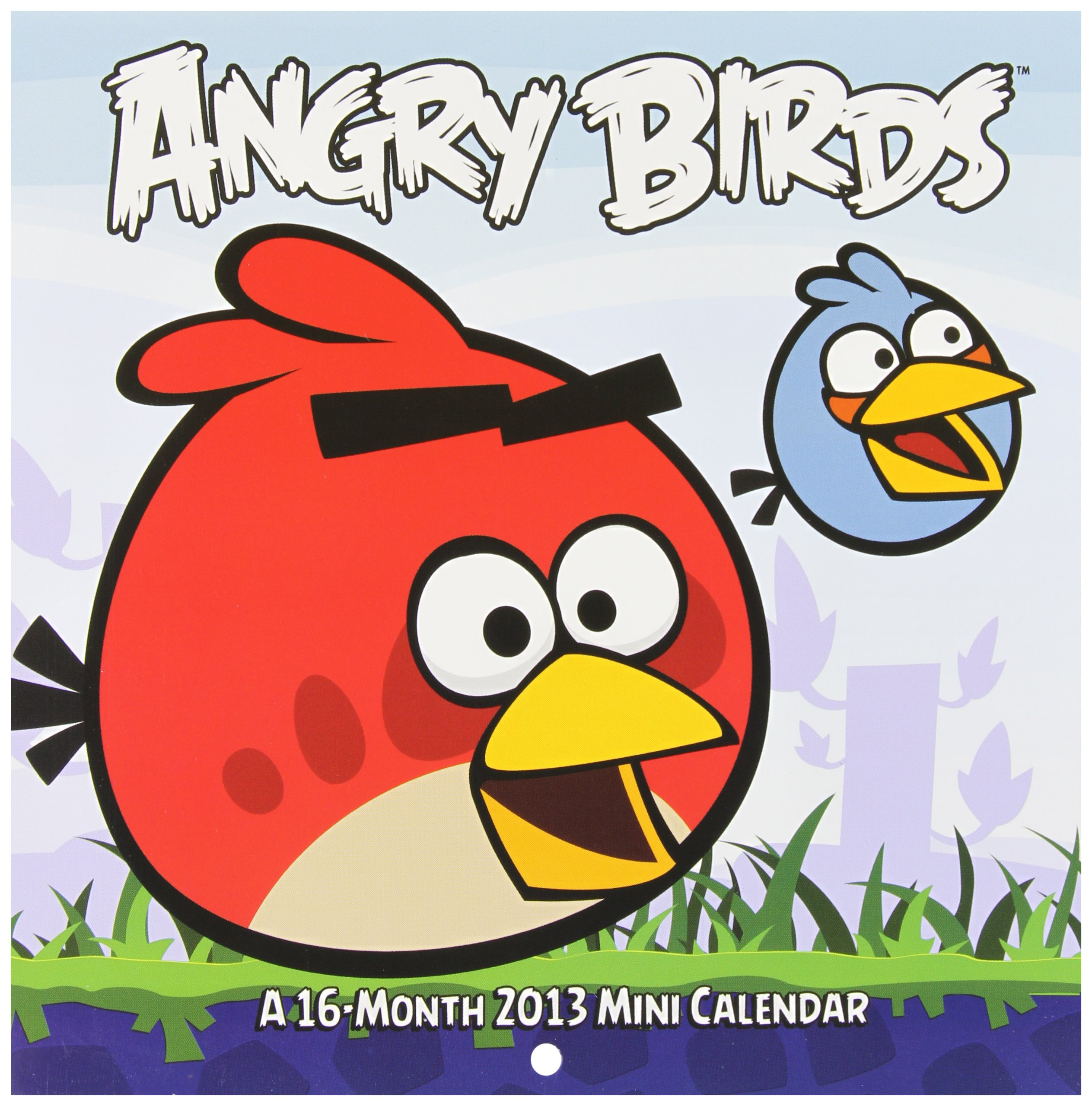 Read Online Angry Birds 2013 Large Mini Calendar pdf epub