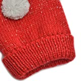 Holiday Winter Animal Mitten Gloves