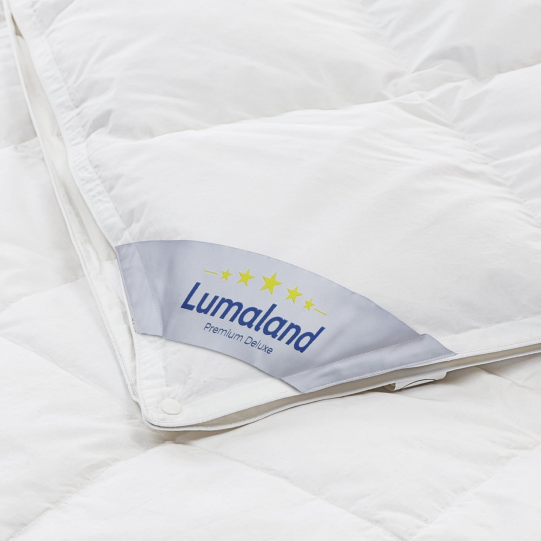 Lumaland Luxury Daunendecke 4 Jahreszeiten 90% Entendaunen 10% Entenfedern Klasse 1 Füllung 320+1060g 200x200 cm