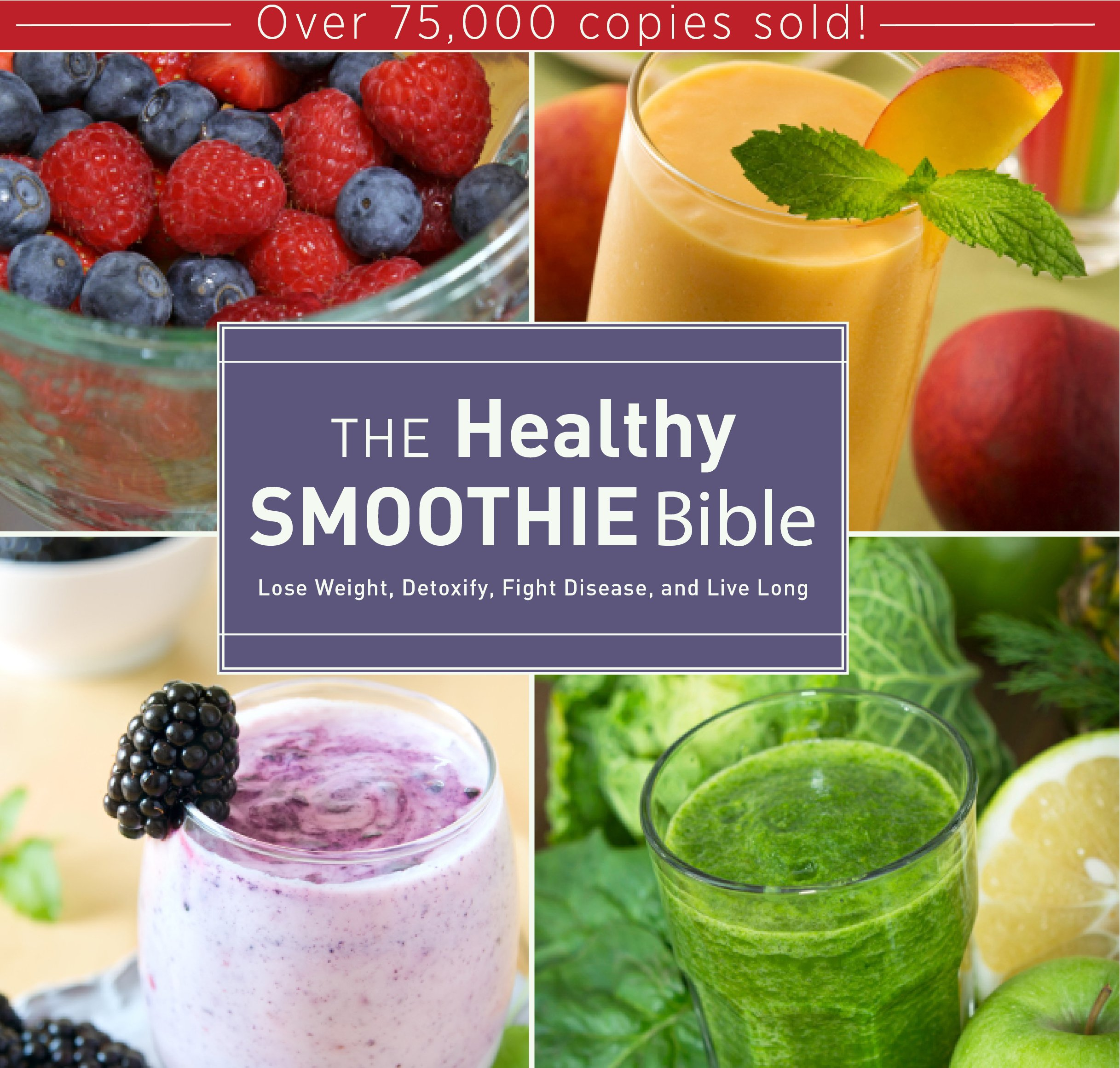 Healthy Smoothie Bible Detoxify Disease product image