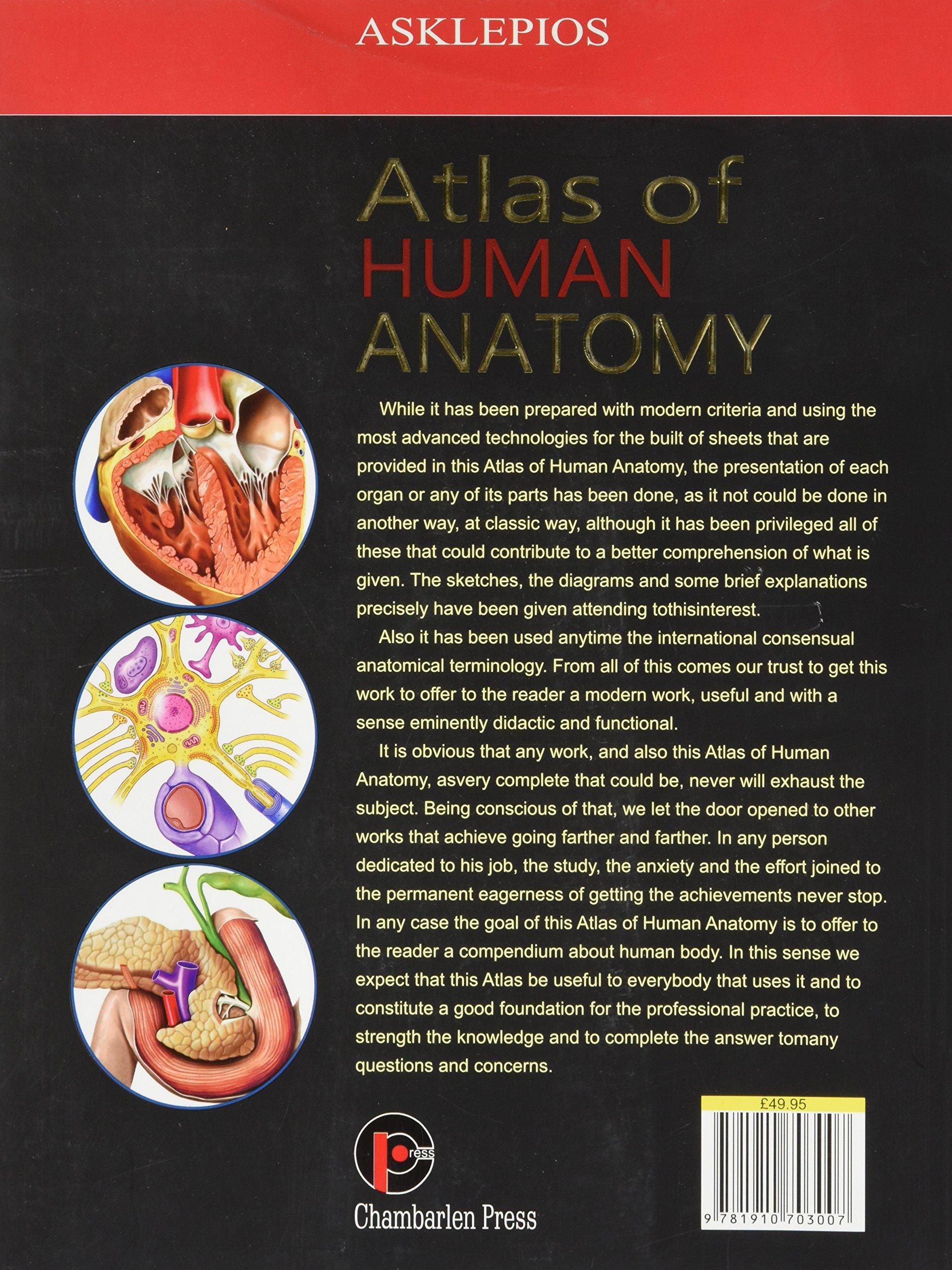 Atlas Of Human Anatomy Jordi Vigue 9781910703007 Amazon Books