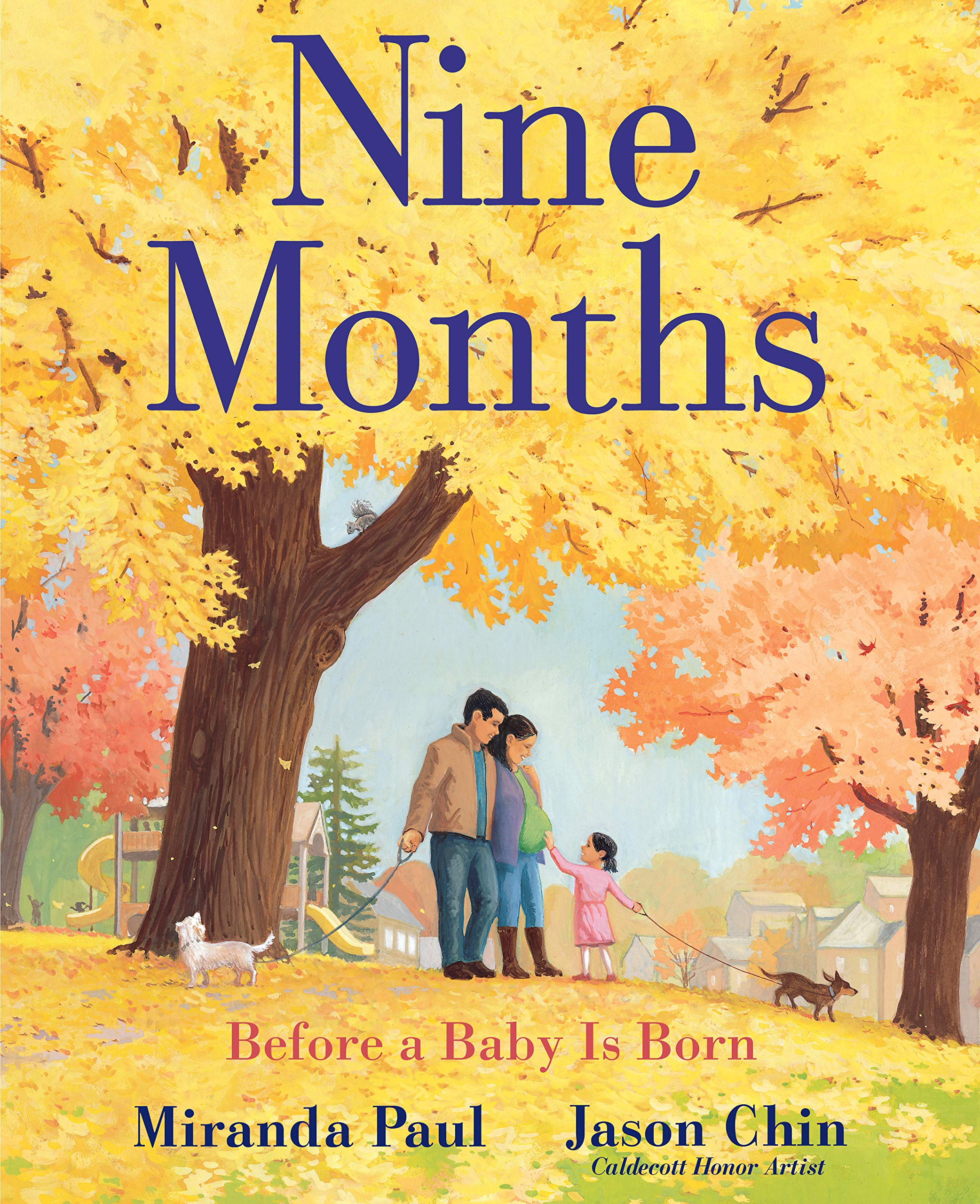 Image result for nine months before a baby amazon