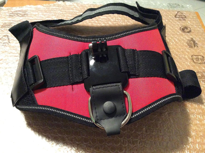 QUMOX Montura cámara arnés ajustable perro para Gopro Hero HD ...
