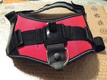 QUMOX Montura cámara arnés ajustable perro para Gopro Hero HD SJCAM SJ4000 wifi ajusta perros 15-120 LBS, Rojo: Amazon.es: Electrónica
