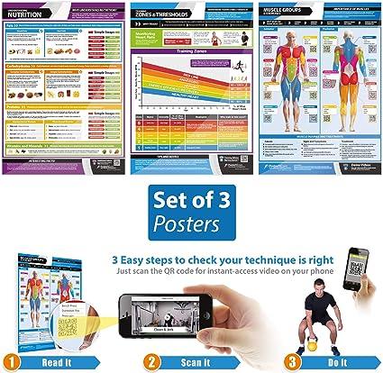 STRETCHING Professional Gym Health Club Instructional 2-POSTER SET w//QR Codes