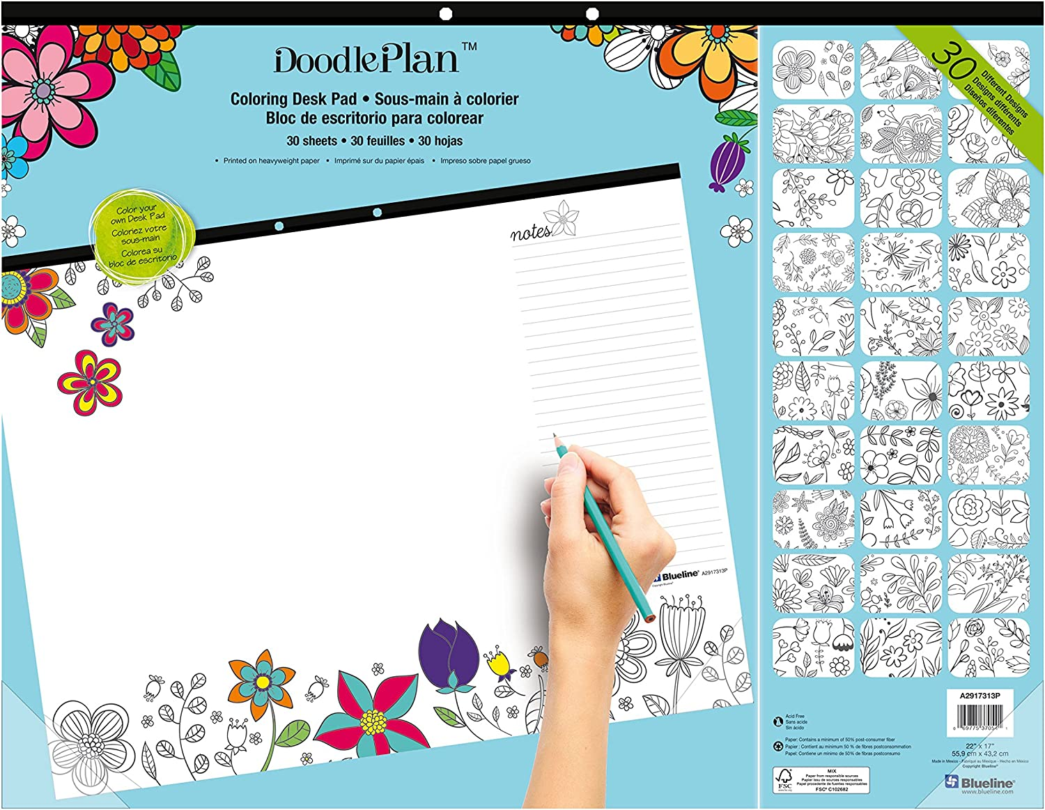 Blueline Doodle Plan Coloring Desk Pad, Garden Design, 22 x 17 (A2917313P)