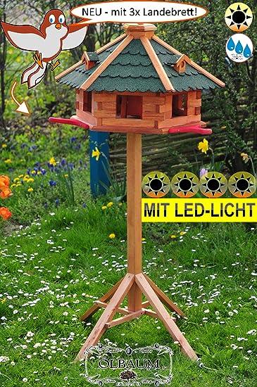 BTV-Ölbaum Vogel-Futterhaus mit Landebahn + LED - Beleuchtung ...