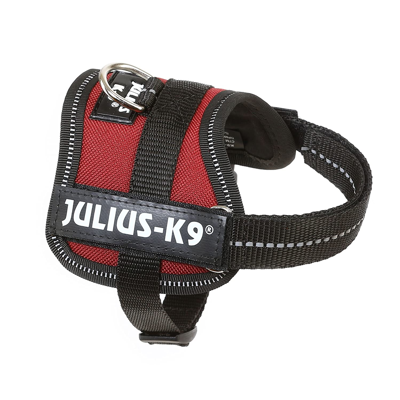 Trixie Julius-K9 Dog Powerharness Baby 1 (Xs) (XS) (Bordeaux)
