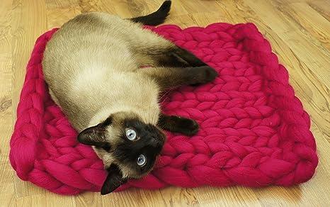 Pet cama, estera, manta. Naturales y ecológica lana. Hecho a mano.