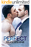 Perfect (Soulmates Book 4)