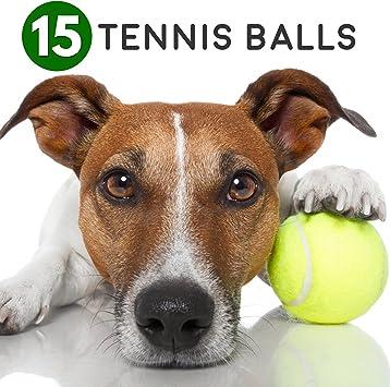 15 pelotas blandas de tenis de color verde. - Masticar Juguete ...