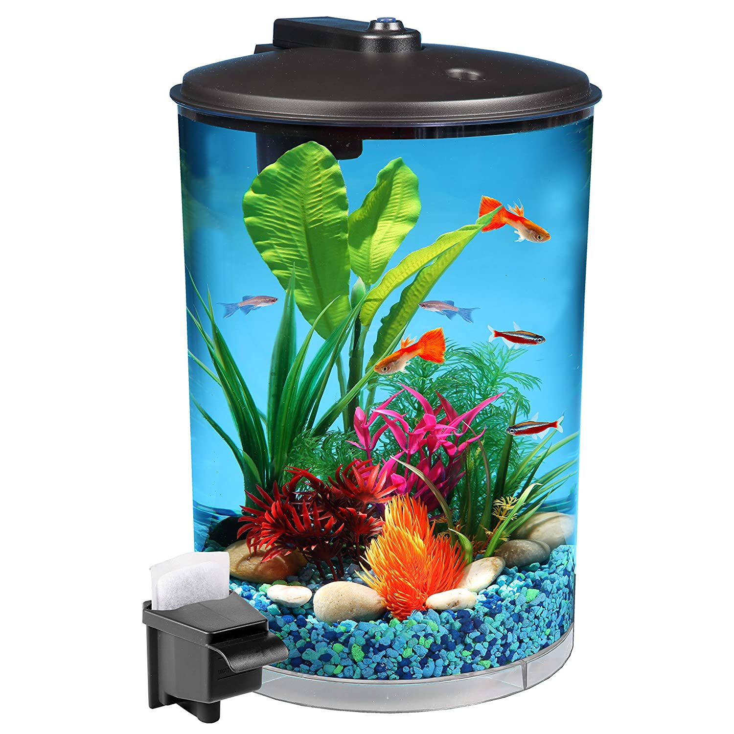 Pleasing Amazon Com Koller Products Aquaview 3 Gallon 360 With Power Filter Wiring Digital Resources Remcakbiperorg