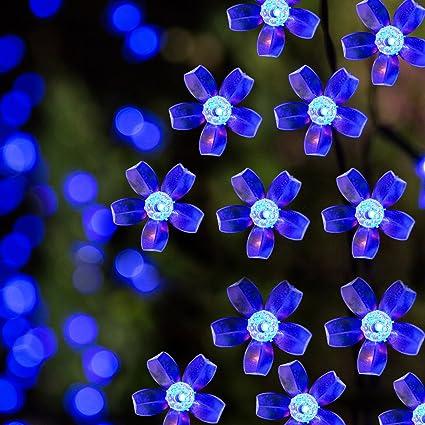Amazon.com: Solar LED cadena luces, 100 LED flor azul, 39.1 ...