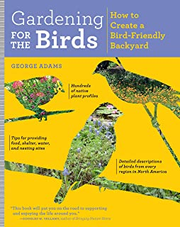 Gardening For The Birds: How To Create A Bird Friendly Backyard