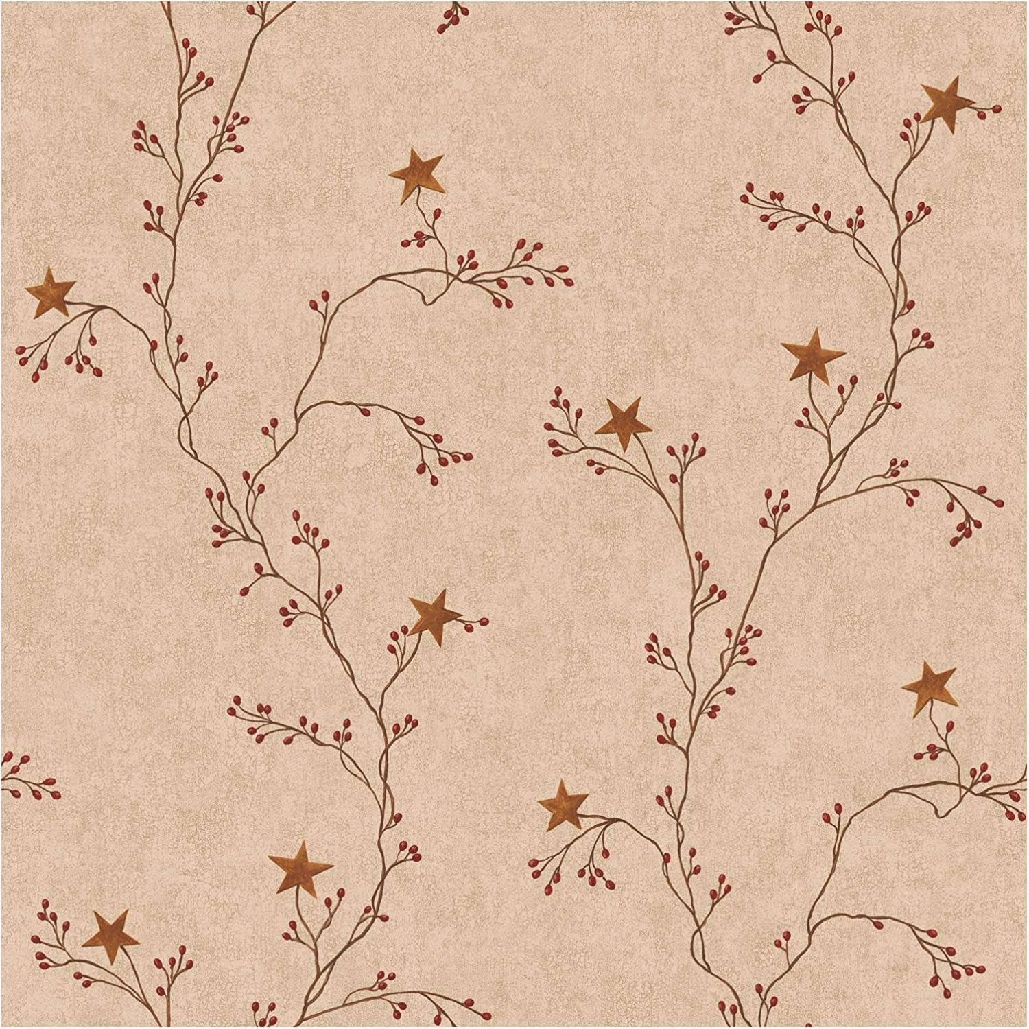 Amazon Com York Wallcoverings Rf3527smp Best Of Country Star