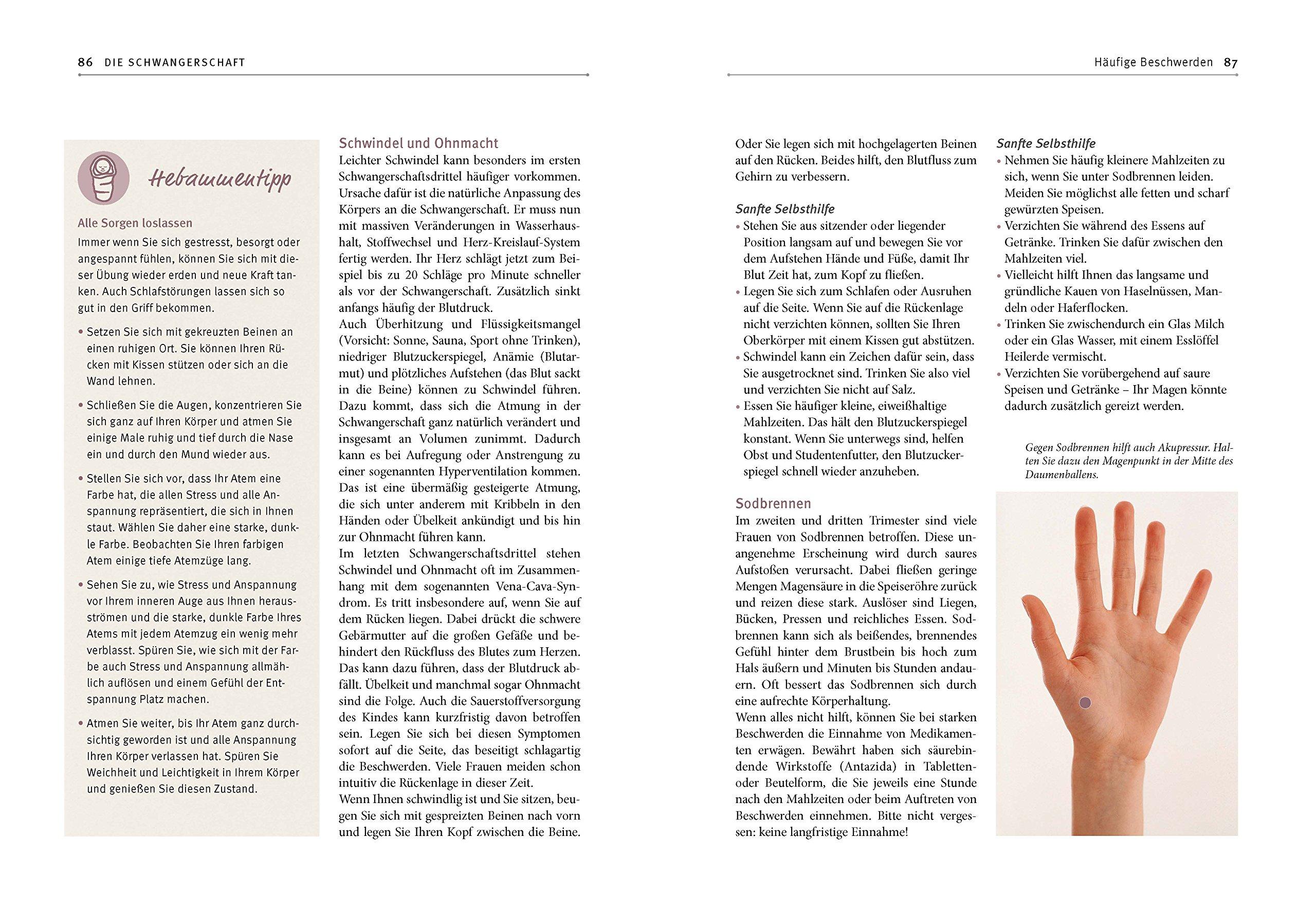 Hebammen-Gesundheitswissen: Für Schwangerschaft, Geburt und die Zeit ...
