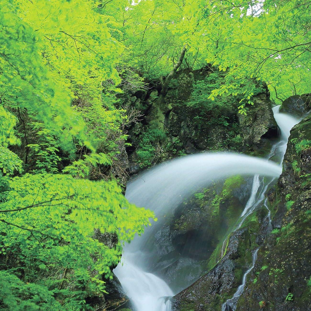 森 Ipad壁紙 幾重にも折れて滝壺に入る七折の滝 自然が生み出す美しい