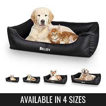 BELISY Cama para perro Delta ortopédica de imitación de cuero I Cesta para perro: Amazon.es: Productos para mascotas