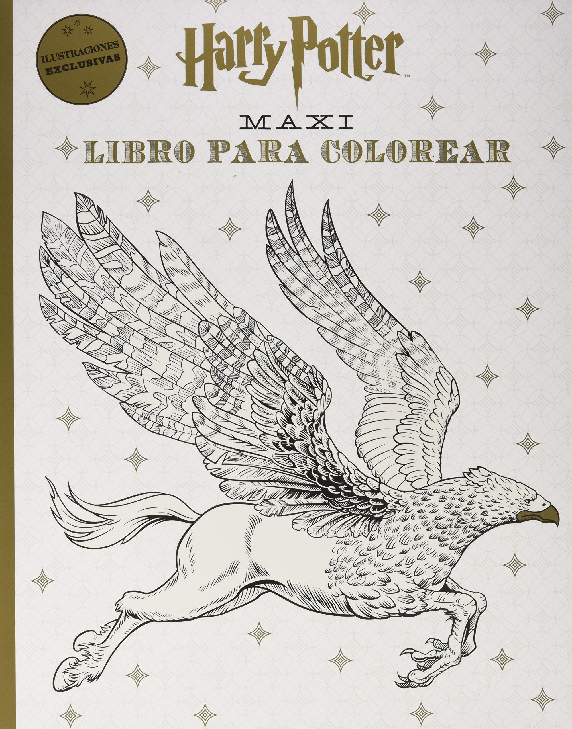 Harry Potter Maxi libro para colorear: Amazon.es: Vv.Aa.: Libros