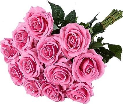 m-choice rosa regalo de San Valentín romántico flor de rosa de ...