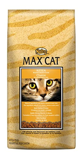 NUTRO MAX Dry Cat Food