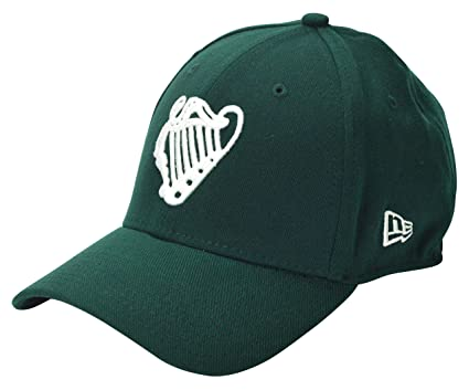 03424418e8c Irish Baseball Team Ireland Official Embroidered Green New Era 39Thirty  Stretch Fit Cap – Small