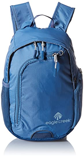 72f1633cb8 Eagle Creek Travel Bug Mini Backpack RFID