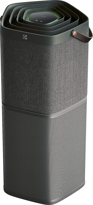 Electrolux PA91-604DG - Purificador de aire, 17 decibelios, plástico: Amazon.es: Hogar