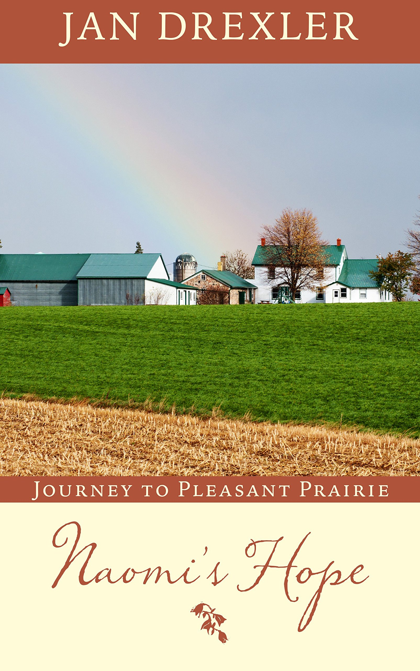 Buy Naomi's Hope (Journey to Pleasant Prairie) Book Online at Low Prices in  India | Naomi's Hope (Journey to Pleasant Prairie) Reviews & Ratings -  Amazon.in