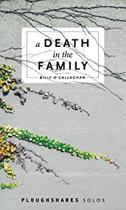 A Death in the Family (Kindle Single) (Ploughshares Solos)