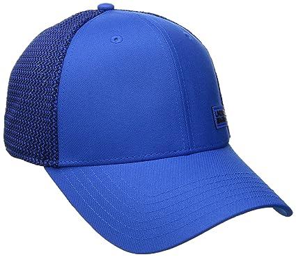 17a91e73093 Under Armour Men s Twist Low Crown Cap  Amazon.ca  Sports   Outdoors