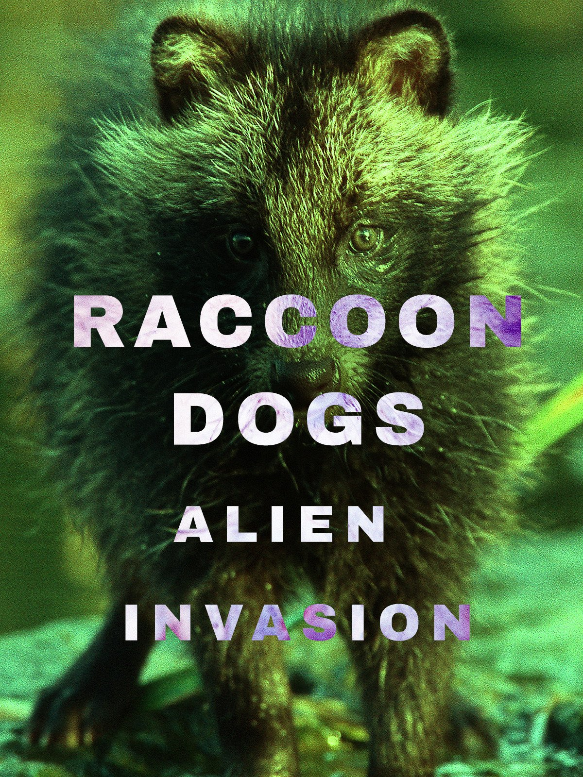 Raccoon Dogs: Alien Invasion on Amazon Prime Video UK