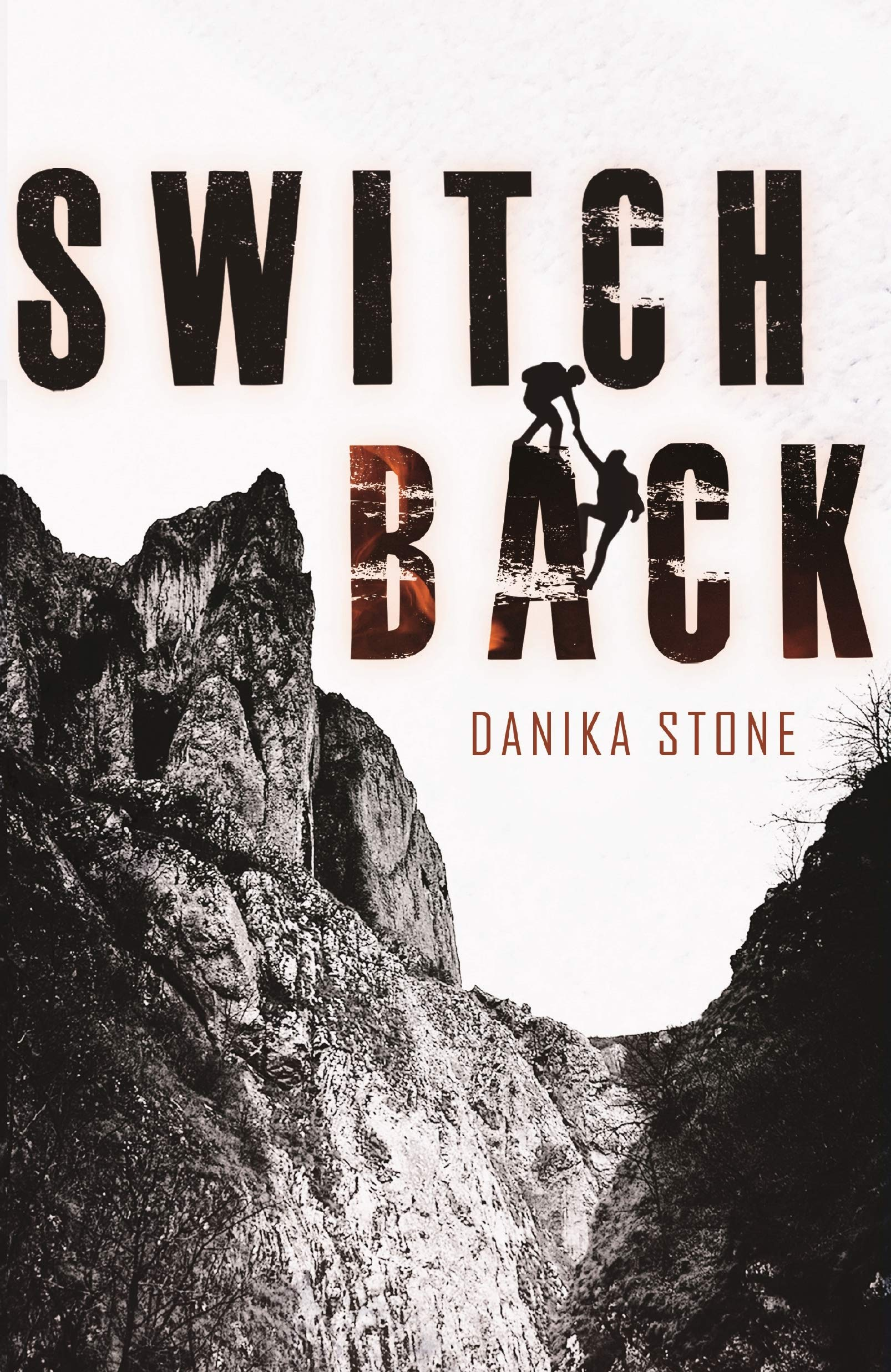 Amazon.com: Switchback (9781250221650): Stone, Danika: Books