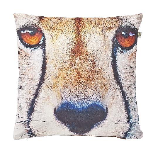 Funda de cojín 45 x 45 cm Color Tiger: Amazon.es: Hogar