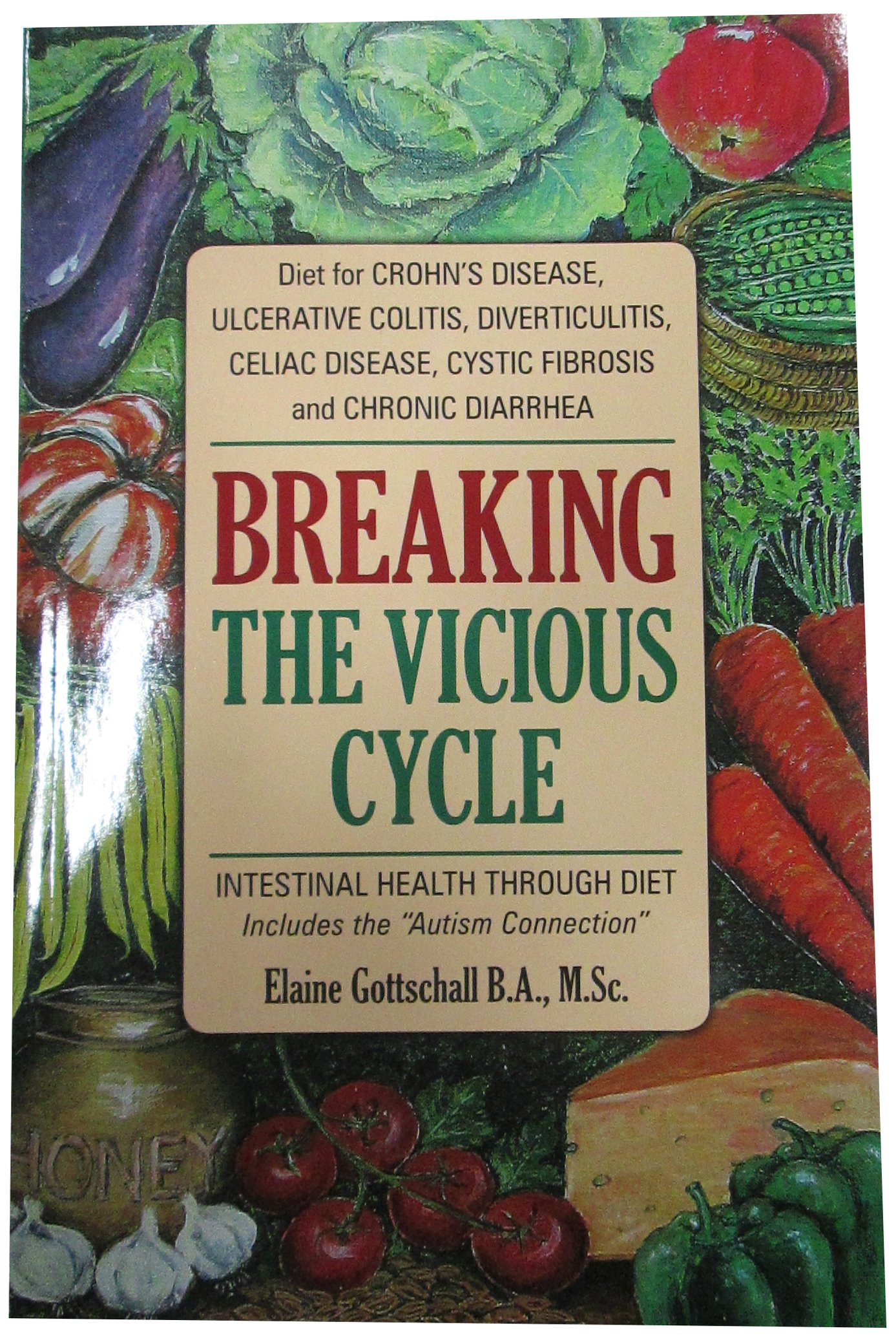Breaking the Vicious Cycle Intestinal Health Through Diet Elaine