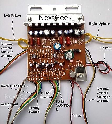NextGeek™ 100W Stereo 4440 IC Amplifier Board: Amazon in: Electronics