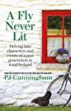 A Fly Never Lit: Stories Which Shine a Light on a Past Generation Growing Up in the Heartland of Ireland