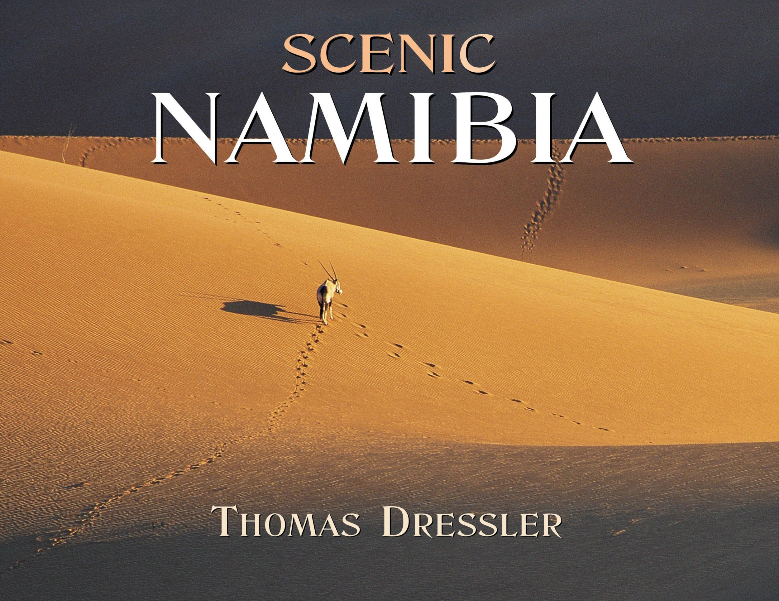 Download Scenic Namibia pdf