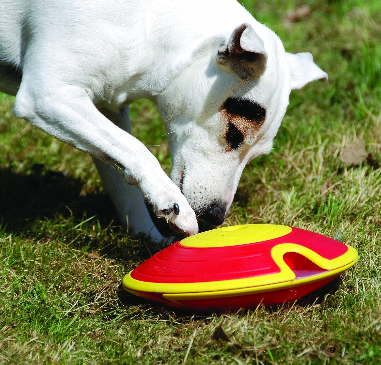 Nina Ottosson Dog Treat Maze: Amazon.es: Productos para mascotas