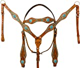 AceRugs Beautiful Western Headstall Bridle REINS