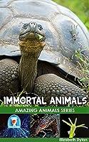 Immortal Animals - Amazing Animals (Amazing