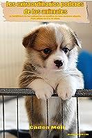 Los Extraordinarios Poderes  De Los Animales: La
