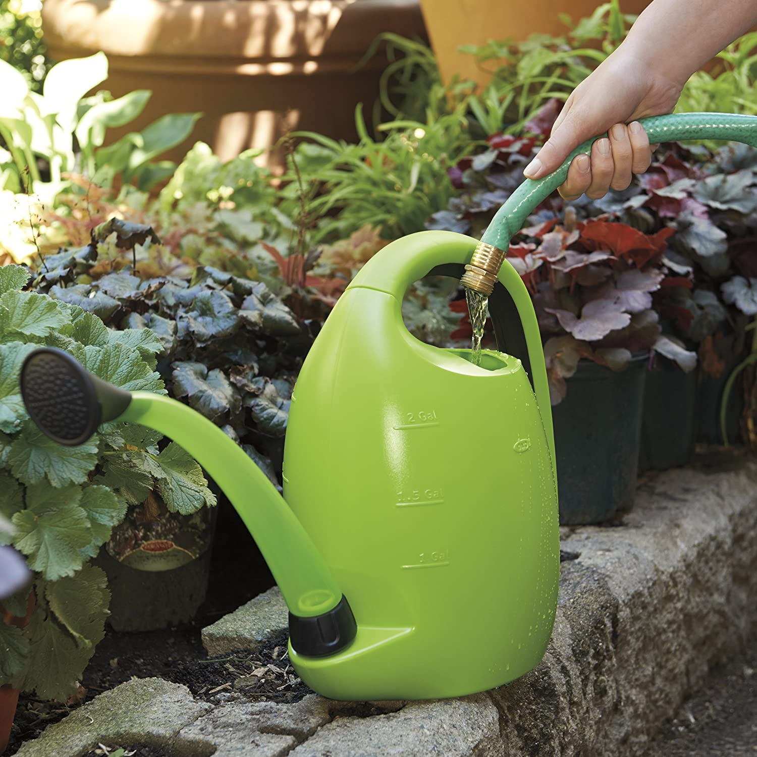 oxo watering can