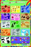 laminated know your colours educational teaching children kids poster wall chart/ size app. (38.2X57.2) cm