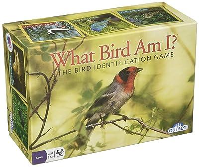 "Bird Trivia Game ""What Bird Am I?"""