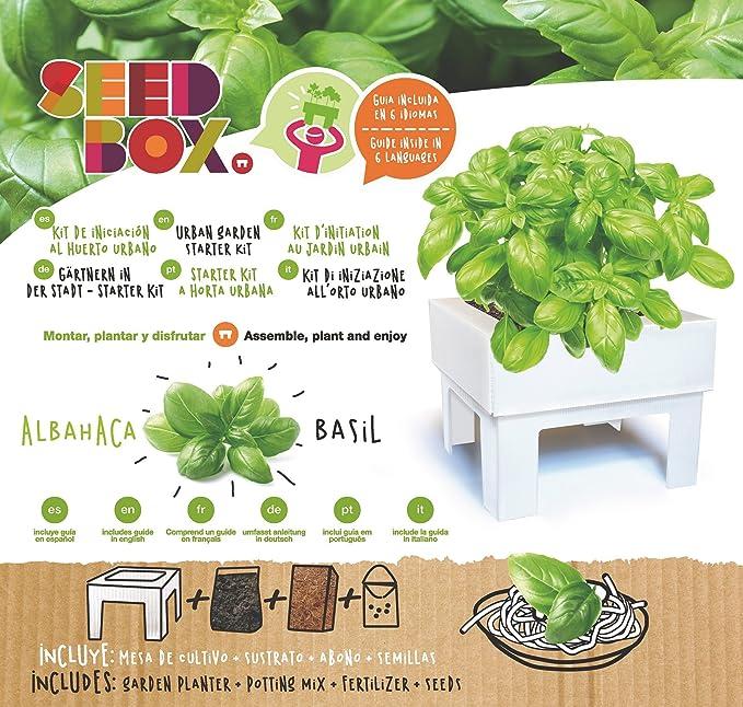 SeedBox SBMCUPE Huerto Urbano Cultívame Mini - perejil, 17x4x17 cm ...