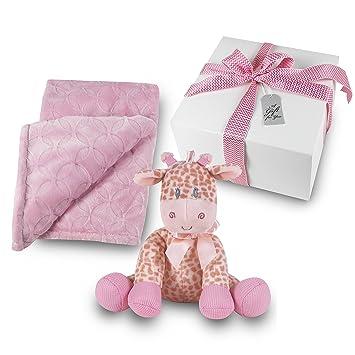 Amazon Com Baby Girl Gift Set Plush Pink Blanket With Stuffed
